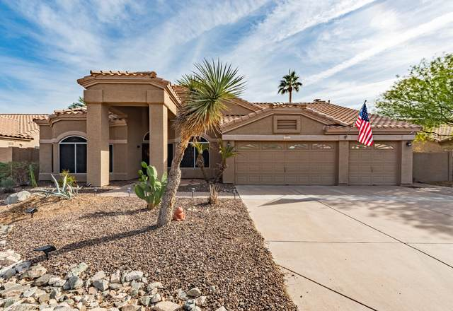 661 W Muirwood Drive, Phoenix, AZ 85045 (MLS #6163796) :: The Laughton Team