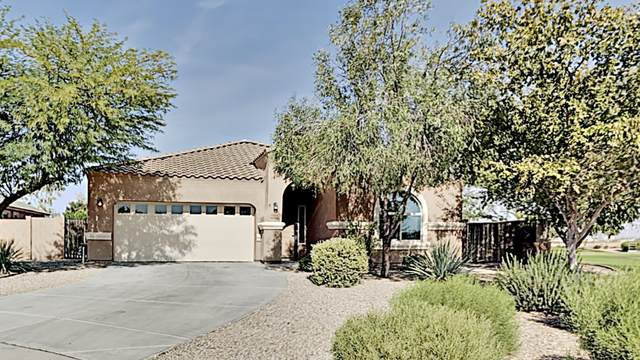 5806 E Artemis Drive, Florence, AZ 85132 (MLS #6163817) :: Long Realty West Valley