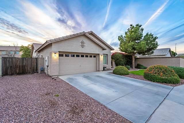 302 S 117TH Avenue, Avondale, AZ 85323 (MLS #6163826) :: Lifestyle Partners Team