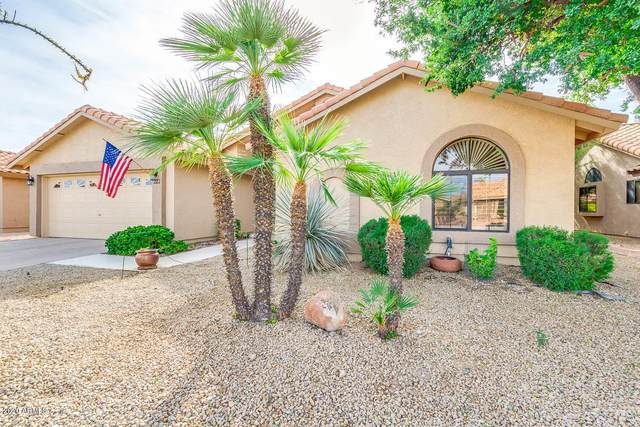 9113 W Oraibi Drive, Peoria, AZ 85382 (MLS #6163859) :: Sheli Stoddart Team | M.A.Z. Realty Professionals
