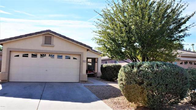 817 E Rossi Court, San Tan Valley, AZ 85140 (MLS #6163860) :: The Laughton Team