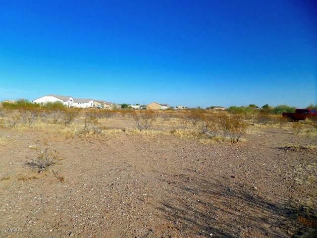 XXXX N 224th Drive, Wittmann, AZ 85361 (MLS #6163865) :: Brett Tanner Home Selling Team
