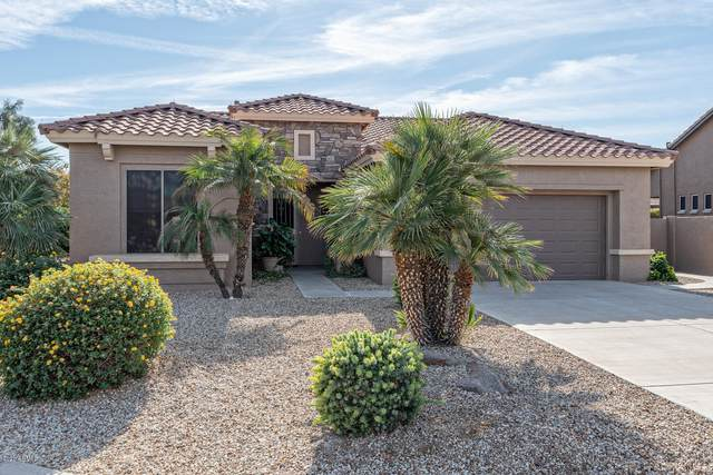 15523 W Roanoke Avenue, Goodyear, AZ 85395 (MLS #6163902) :: Budwig Team | Realty ONE Group