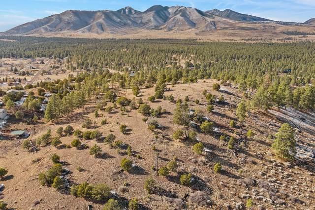 11574 Rope Arabian Road, Flagstaff, AZ 86004 (MLS #6163913) :: Long Realty West Valley