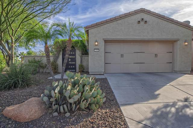 12905 W Lone Tree Trail, Peoria, AZ 85383 (MLS #6163926) :: John Hogen | Realty ONE Group