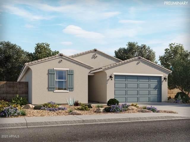 4402 W Bush Bean Way, San Tan Valley, AZ 85143 (MLS #6163935) :: D & R Realty LLC