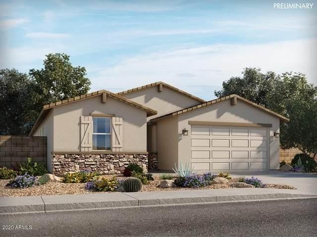 4419 W Bush Bean Way, San Tan Valley, AZ 85143 (MLS #6163941) :: D & R Realty LLC