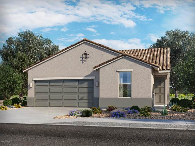 21187 N Evergreen Drive, Maricopa, AZ 85138 (MLS #6163947) :: Midland Real Estate Alliance