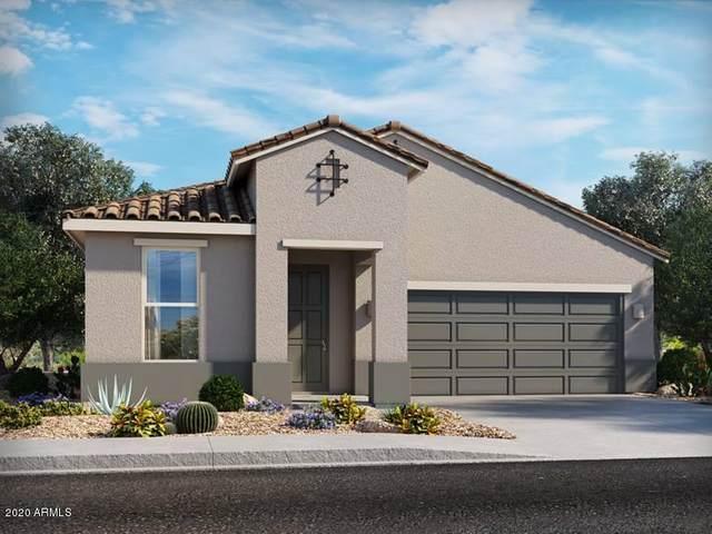 41744 W Sagebrush Court, Maricopa, AZ 85138 (MLS #6163957) :: Midland Real Estate Alliance