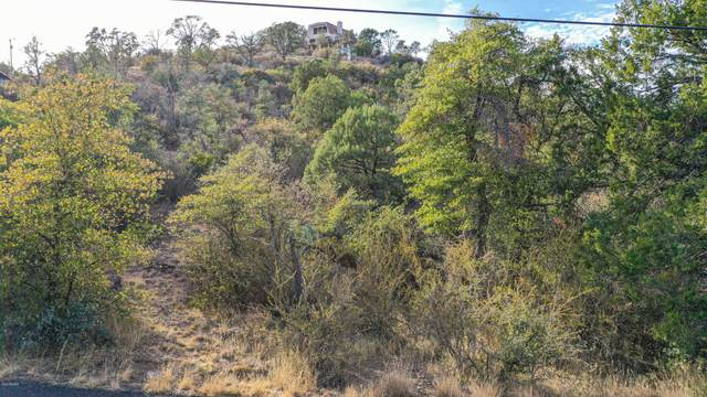 1976 N Holly Drive, Prescott, AZ 86305 (MLS #6163961) :: The Dobbins Team