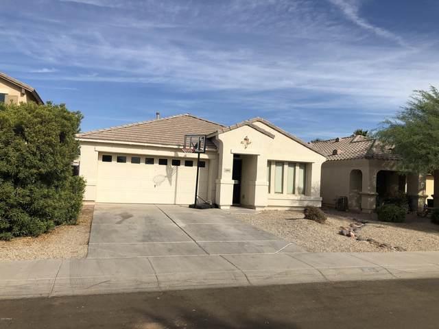 3984 E Tanzanite Lane, San Tan Valley, AZ 85143 (MLS #6163968) :: D & R Realty LLC
