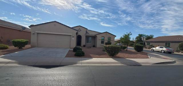 42793 W Kingfisher Drive, Maricopa, AZ 85138 (MLS #6164077) :: The Laughton Team