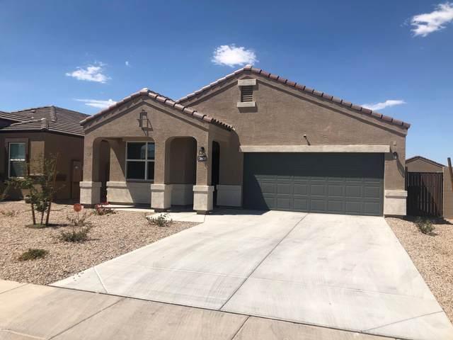 20361 N Dali Lane, Maricopa, AZ 85138 (MLS #6164081) :: neXGen Real Estate