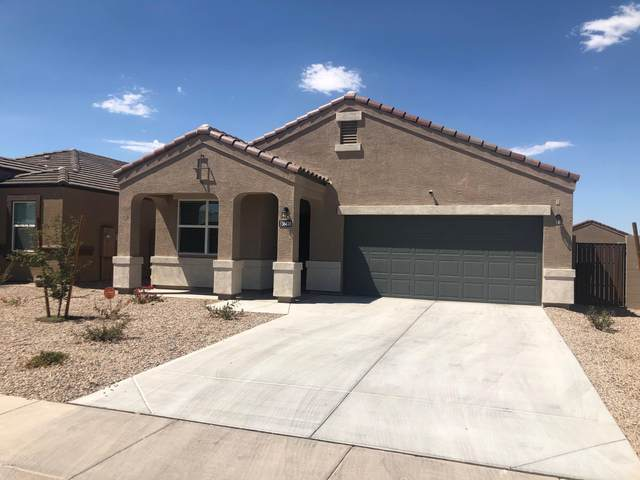 20361 N Dali Lane, Maricopa, AZ 85138 (MLS #6164081) :: Midland Real Estate Alliance