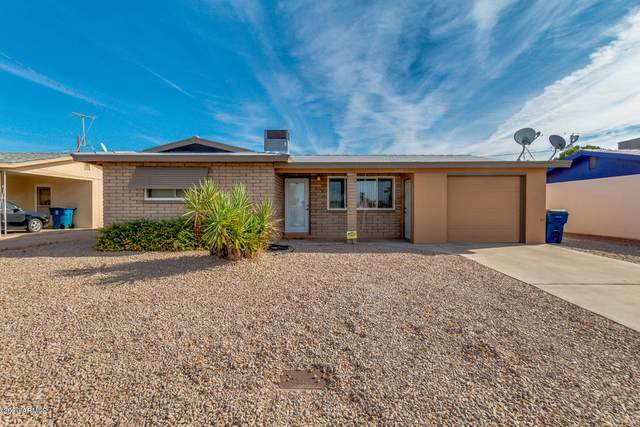 1443 S Delaware Drive, Apache Junction, AZ 85120 (MLS #6164147) :: My Home Group