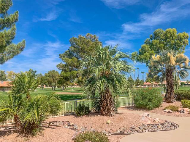 26012 S Flame Tree Drive, Sun Lakes, AZ 85248 (MLS #6164207) :: The Garcia Group