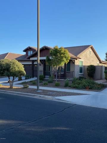 15135 W Windrose Drive, Surprise, AZ 85379 (MLS #6164218) :: Balboa Realty