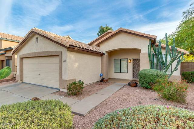 2011 E Daley Lane, Phoenix, AZ 85024 (MLS #6164234) :: Midland Real Estate Alliance