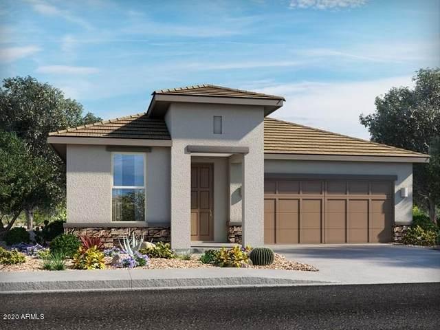 21147 N Evergreen Drive, Maricopa, AZ 85138 (MLS #6164293) :: Power Realty Group Model Home Center