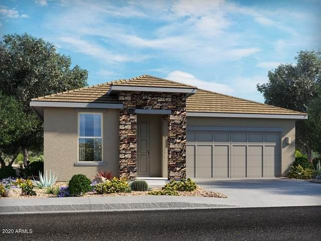 21165 N Evergreen Drive, Maricopa, AZ 85138 (MLS #6164301) :: D & R Realty LLC