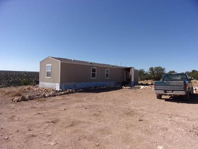 2035 Celeste Camino, Heber, AZ 85928 (MLS #6164305) :: Keller Williams Realty Phoenix