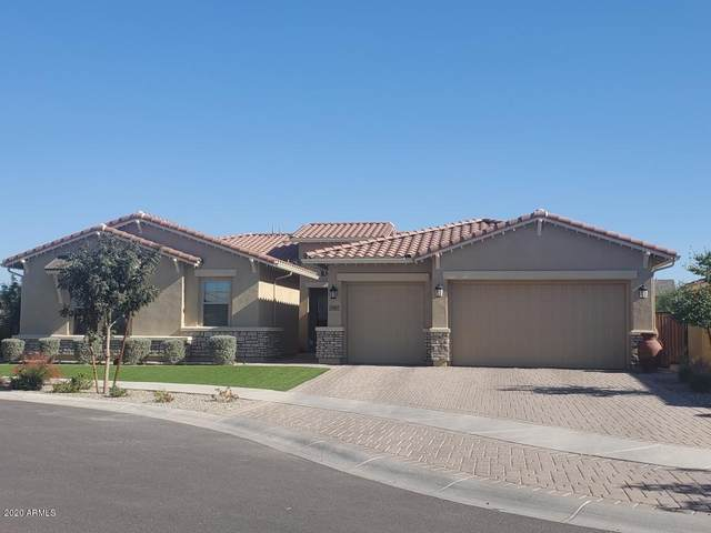 4309 S Binary Circle, Mesa, AZ 85212 (MLS #6164319) :: John Hogen | Realty ONE Group