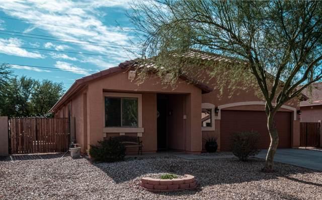585 E Trellis Road, San Tan Valley, AZ 85140 (MLS #6164327) :: D & R Realty LLC
