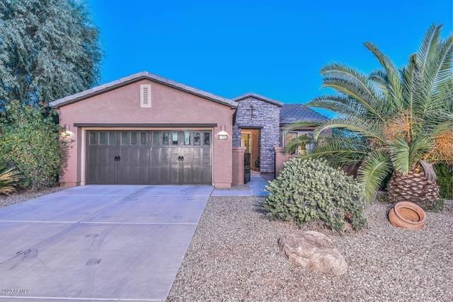 26723 N 127th Drive, Peoria, AZ 85383 (MLS #6164342) :: The Daniel Montez Real Estate Group