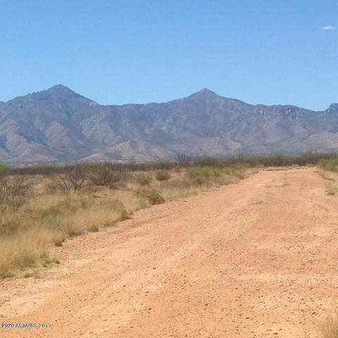 Lot 3 12Ac S Windsock Road, Hereford, AZ 85615 (MLS #6164363) :: Brett Tanner Home Selling Team