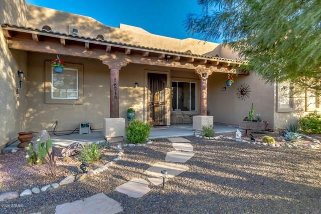 28213 N 253RD Drive, Wittmann, AZ 85361 (MLS #6164374) :: Keller Williams Realty Phoenix