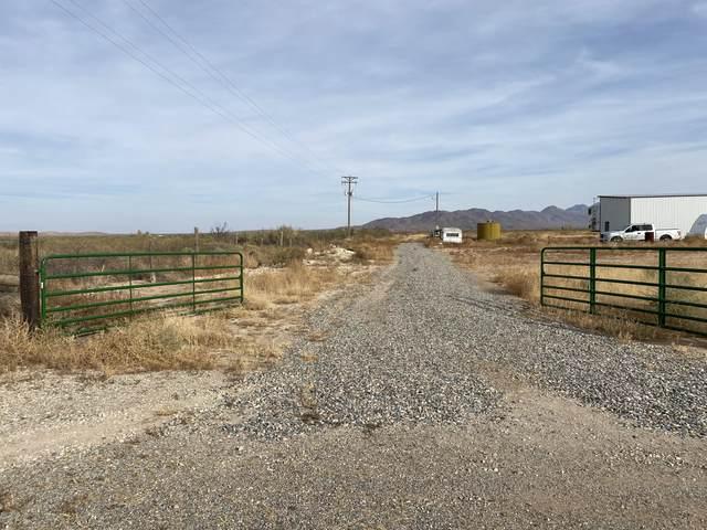 3832 N Joe Hines Road, Willcox, AZ 85643 (MLS #6164391) :: neXGen Real Estate