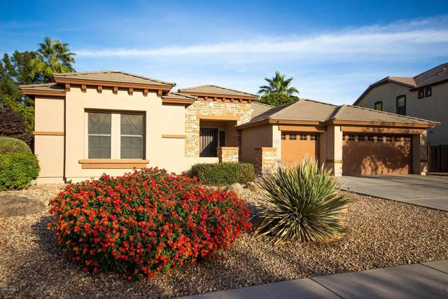 929 N Thunderbird Avenue, Gilbert, AZ 85234 (MLS #6164407) :: BVO Luxury Group