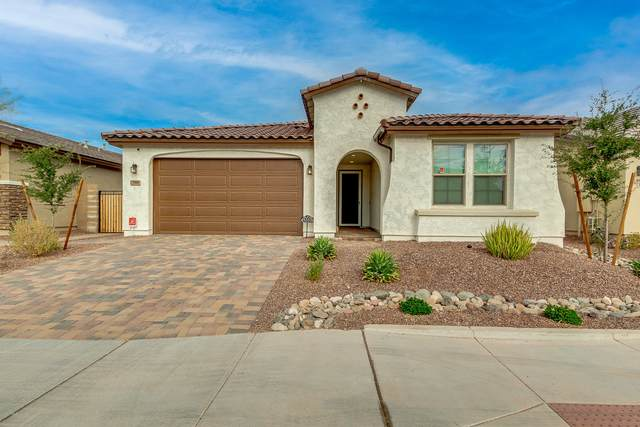 9800 W Robin Lane, Peoria, AZ 85383 (MLS #6164435) :: Midland Real Estate Alliance