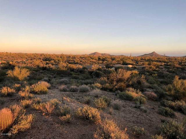 34519 N 87TH Way, Scottsdale, AZ 85266 (MLS #6164442) :: The Ellens Team