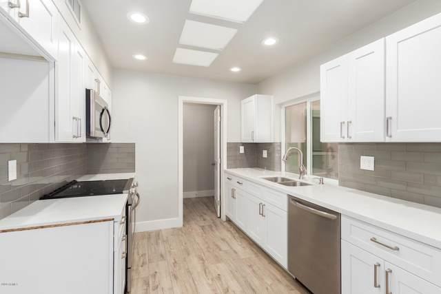 10613 W El Capitan Circle, Sun City, AZ 85351 (MLS #6164461) :: Long Realty West Valley