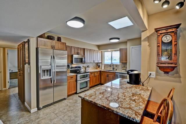 10317 W Floriade Drive, Sun City, AZ 85351 (MLS #6164463) :: Long Realty West Valley