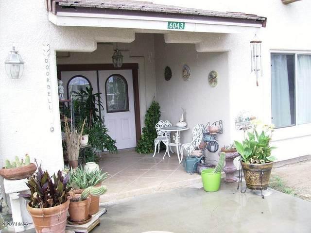 6043 E Risner Boulevard, Sierra Vista, AZ 85635 (MLS #6164514) :: BVO Luxury Group