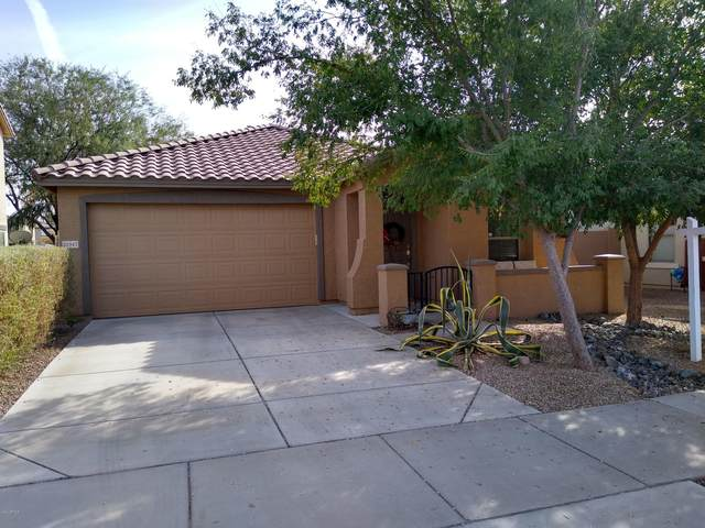 21947 E Via Del Palo, Queen Creek, AZ 85142 (MLS #6164523) :: The Kurek Group