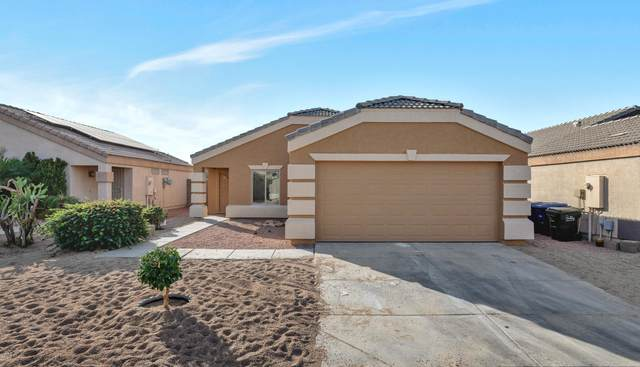 12405 W Dreyfus Drive, El Mirage, AZ 85335 (MLS #6164597) :: Midland Real Estate Alliance