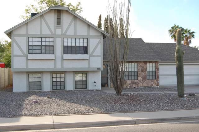 1025 E Utopia Road, Phoenix, AZ 85024 (MLS #6164662) :: Long Realty West Valley