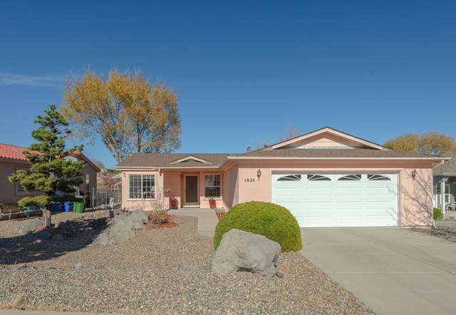 1824 Sarafina Drive, Prescott, AZ 86301 (MLS #6164683) :: The Laughton Team