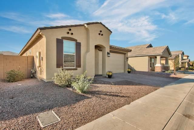 2335 E Harwell Road, Phoenix, AZ 85042 (MLS #6164691) :: The Property Partners at eXp Realty