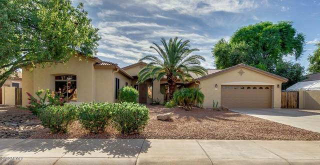 21091 E Stirrup Street, Queen Creek, AZ 85142 (MLS #6164698) :: The Kurek Group