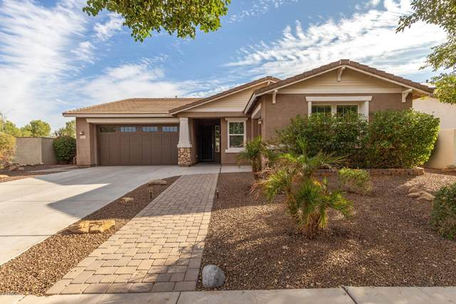 13547 N 147TH Drive, Surprise, AZ 85379 (MLS #6164717) :: Sheli Stoddart Team | M.A.Z. Realty Professionals
