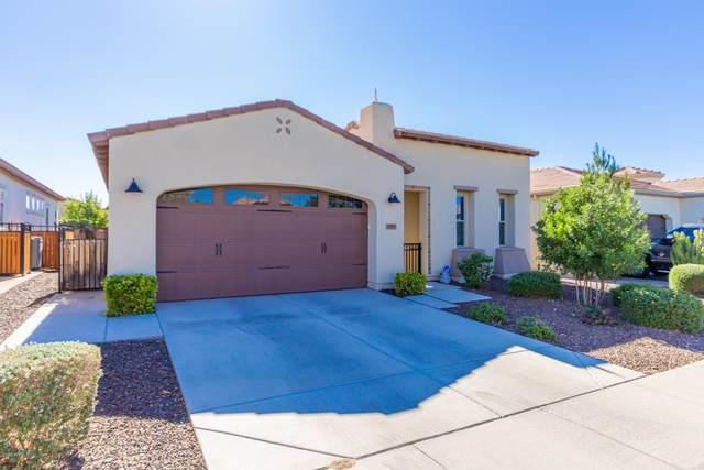 557 E Laddoos Avenue, San Tan Valley, AZ 85140 (MLS #6164734) :: The Laughton Team