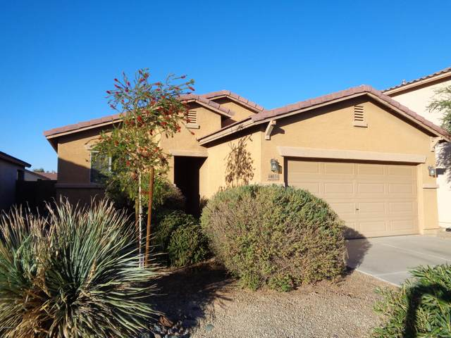 44116 W Askew Drive, Maricopa, AZ 85138 (MLS #6164739) :: The Laughton Team