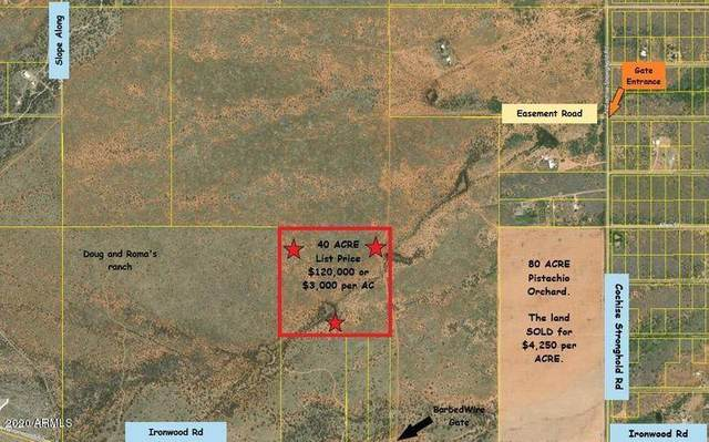 40 Ac Off Ironwood Road, Cochise, AZ 85606 (MLS #6164789) :: The Daniel Montez Real Estate Group