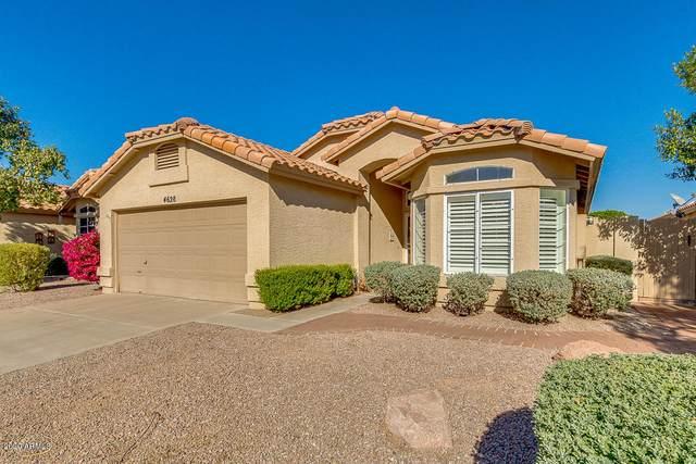 4628 E Shomi Street, Phoenix, AZ 85044 (MLS #6164804) :: Keller Williams Realty Phoenix