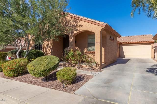 7394 W Palo Brea Lane, Peoria, AZ 85383 (MLS #6164822) :: REMAX Professionals