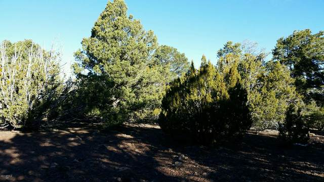 Lot 33 Ridge View Drive, Vernon, AZ 85940 (MLS #6164951) :: Klaus Team Real Estate Solutions